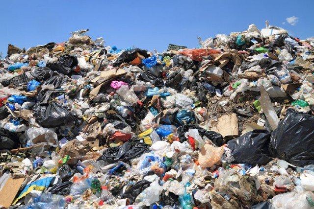 Свалка денег: «ДП» изучил, кто, как и сколько зарабатывает на мусорном бизнесе