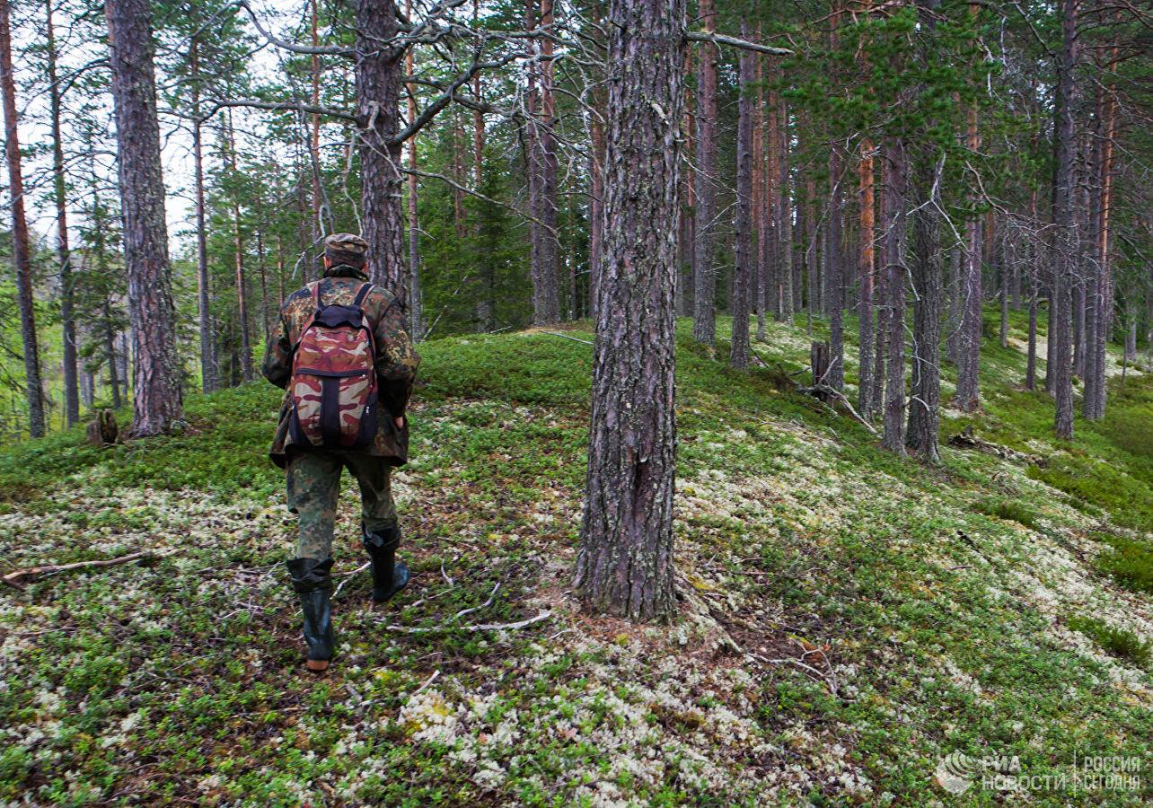 В Рузском городском округе появится новый природный заказник